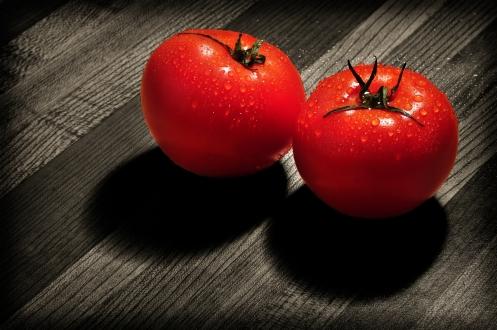 tomato mates
