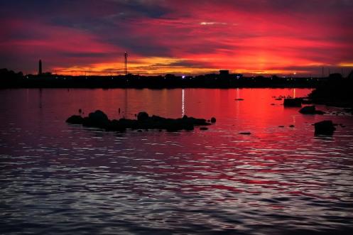 Crimson harbour